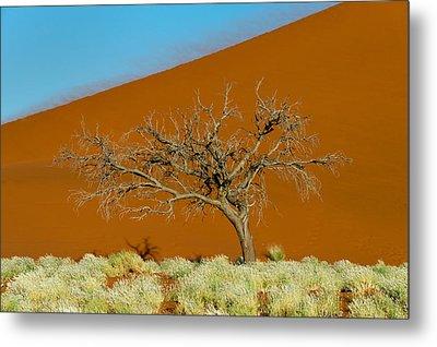 Sand Dune, Sossusvlei, Namib Desert Metal Print
