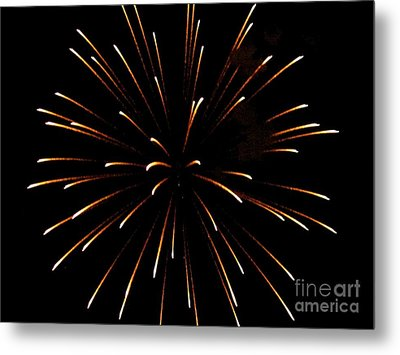 A 4th Of July Flower Metal Print