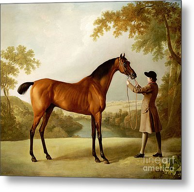 A Bay Racehorse Held By A Groom In An Extensive Landscape Metal Print