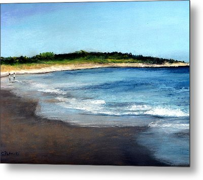Metal Print featuring the painting A Beach In Smithfield by Cindy Plutnicki