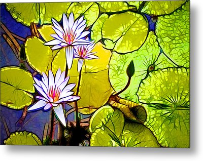 A Beautiful Purple Waterlily  In Pond Metal Print by Lanjee Chee