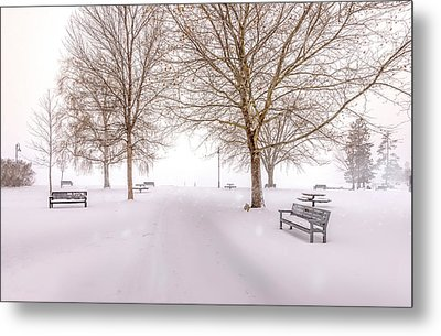 Metal Print featuring the photograph A Beautiful Winter's Morning  by John Poon