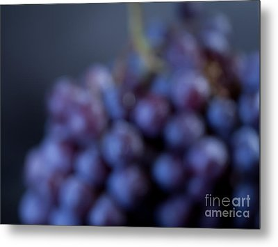 A Blue Bunch Of Grapes Metal Print by Patricia Bainter