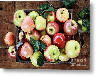 Metal Print featuring the photograph A Bushel Of Apples  by Stephanie Frey