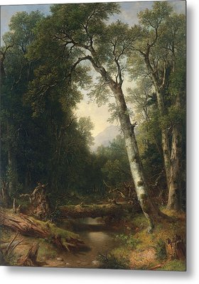 A Creek In The Woods Metal Print