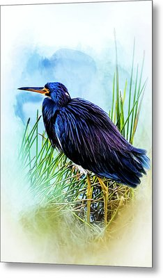 A Day In The Marsh Metal Print