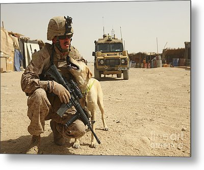 A Dog Handler Posts Security With An Metal Print by Stocktrek Images