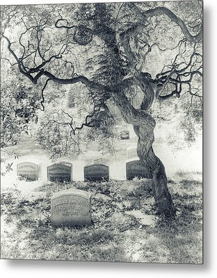 A Family Tree  Metal Print
