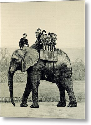 A Farewell Ride On Jumbo From The Illustrated London News Metal Print by English School