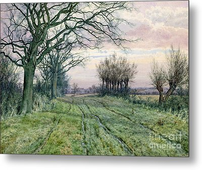 A Fenland Lane With Pollarded Willows Metal Print by William Fraser Garden
