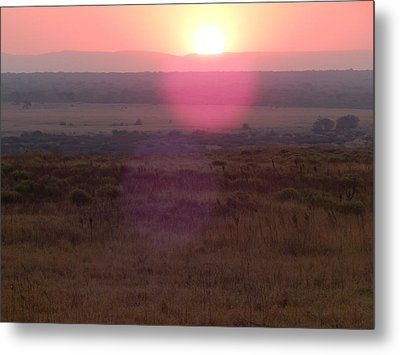 A Flare From South Africa Metal Print by Patrick Murphy