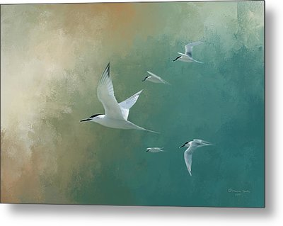 A Flight Of Terns Metal Print by Marvin Spates