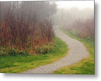 A Foggy Path Metal Print
