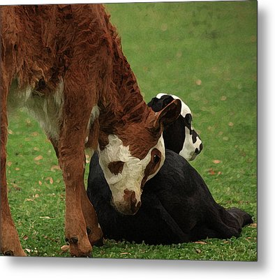 A Friend Indeed Metal Print by Kim Henderson