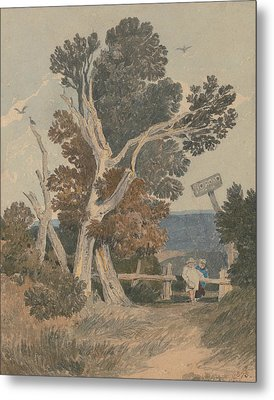 A Group Of Trees By A Fence Metal Print by John Sell Cotman