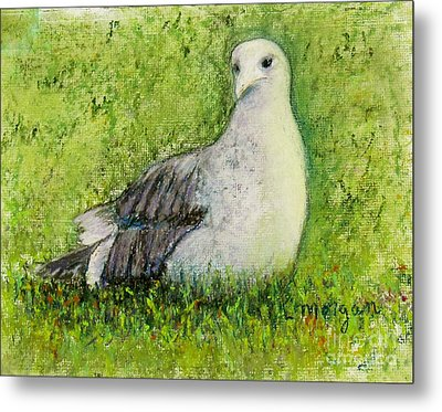 A Gull On The Grass Metal Print