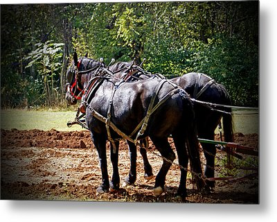A Hard Days Work Metal Print by Jean Haynes