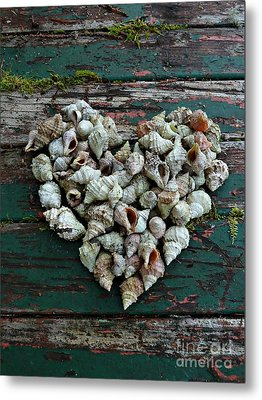 A Heart Made Of Shells Metal Print