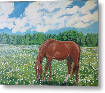 A Horse Named Dante Metal Print by Stella Sherman