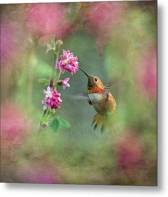 Metal Print featuring the photograph A Jewel In The Flowers by Angie Vogel