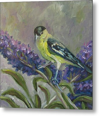 Metal Print featuring the painting A Lesser Goldfinch by Susan  Spohn