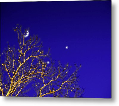 A Little Night Magic Metal Print by Wendy J St Christopher