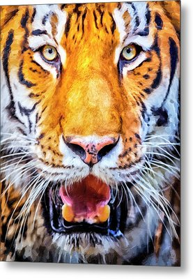 A Look Into The Tiger's Eyes Metal Print by David Millenheft