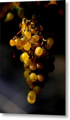 A Luscious Bunch Of Grapes Metal Print