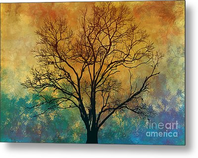 A Magnificent Tree Metal Print by Bedros Awak