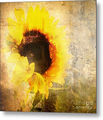 A Memory Of Summer Metal Print by LemonArt Photography