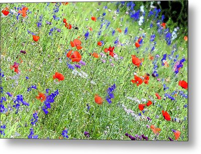 A Merrie Medley In Wildflowers Metal Print by ARTography by Pamela Smale Williams
