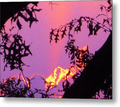 Metal Print featuring the photograph A Mid-summer Sunset by Susan Carella