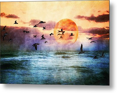 A Moment At Sea Metal Print by Debra and Dave Vanderlaan