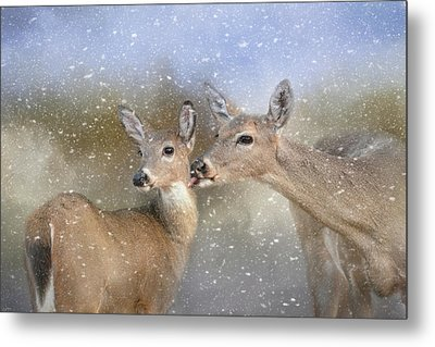 A Mother's Love Deer Art Metal Print