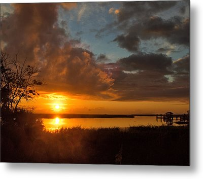 Metal Print featuring the photograph A New Beginning by Laura Ragland