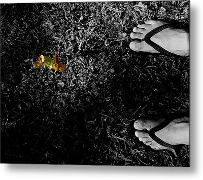 A New Beginning Metal Print