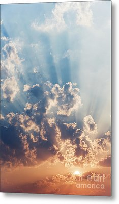 A New Day Metal Print by Tim Gainey