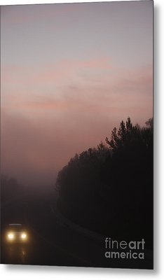 Metal Print featuring the photograph A New Day by Viktor Savchenko