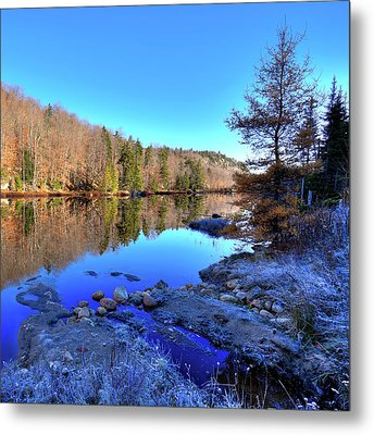 Metal Print featuring the photograph A November Morning On The Pond by David Patterson