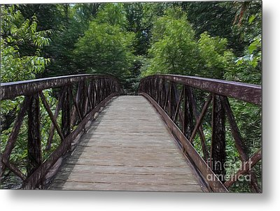 A Pathway To Nature Metal Print by Barbara McMahon