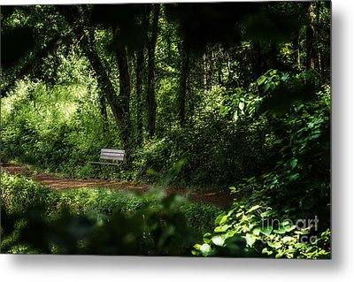 A Peek At The Resting Bench Metal Print by Tamyra Ayles