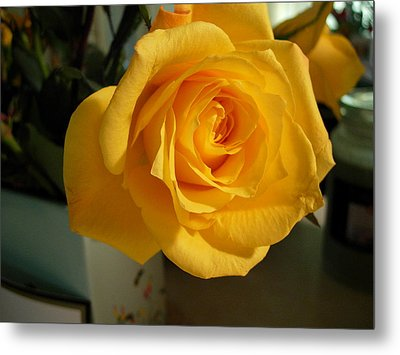 A Perfect Yellow Rose Metal Print