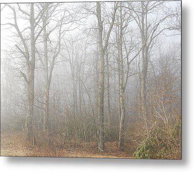 Metal Print featuring the photograph A Perfectly Beautiful Foggy Morning by Diannah Lynch