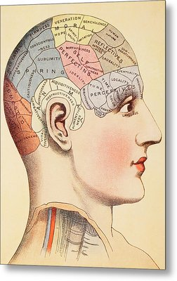 A Phrenological Map Of The Human Brain Metal Print