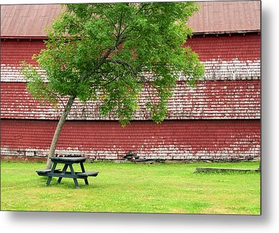 Metal Print featuring the photograph A Picnic For You And Me by Corinne Rhode