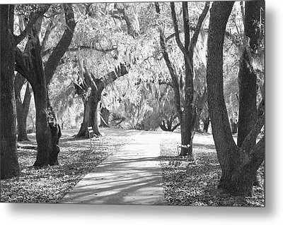 A Place For Contemplation Ir Metal Print by Suzanne Gaff