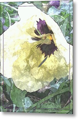 A Pop Of Pansy Metal Print