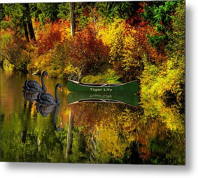 Metal Print featuring the photograph A Quiet Autumn Evening by Diane Schuster