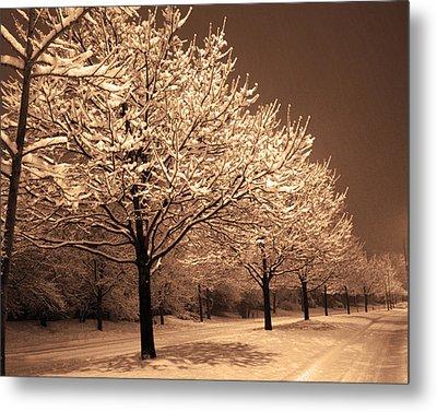 A Quiet Snowy Night Metal Print by Jackie Reitsma