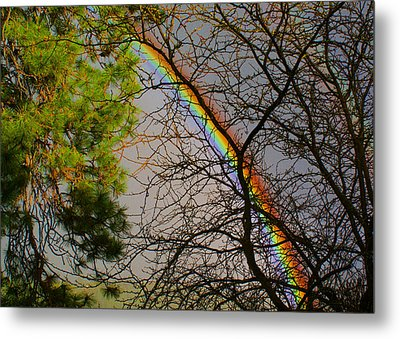 A Rainbow Tree Metal Print by Ben Upham III